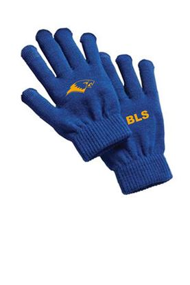 Picture of Bishop Leibold Texting Gloves by Sport-Tek STA01 - Royal