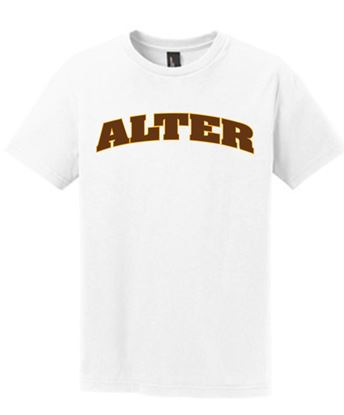 Picture of Alter 2 Color Arch Tee - Youth DT6001Y