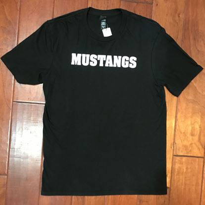 Picture of CinDay Academy Mustangs, White Glitter, District Soft Cotton T-shirt