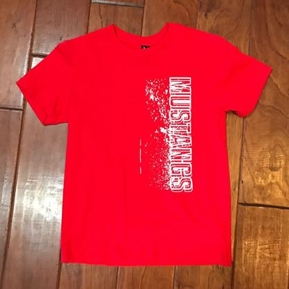Picture of CinDay Academy Mustangs District Soft Cotton Youth T-shirt