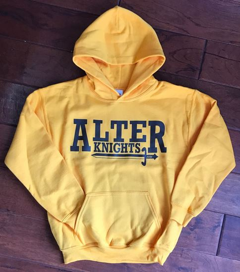 Picture of Alter Knights Youth Gildan Hoodie