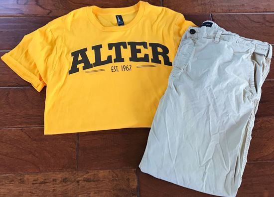Picture of Alter Very Important Tee by Disctrict DT6000