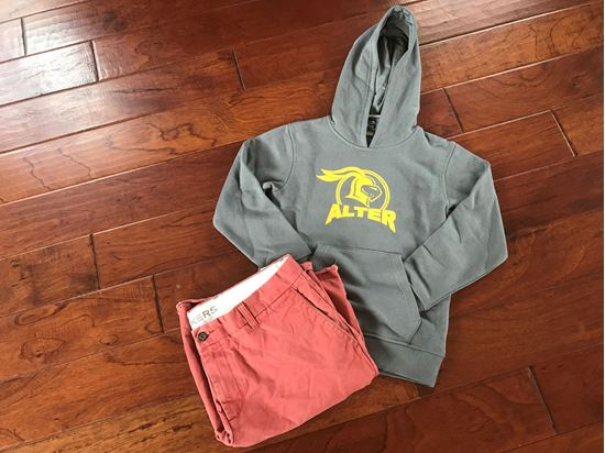 Picture of Alter Knights Youth Hoodie (Knights on back) by Augusta