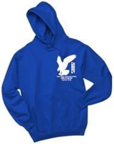Picture of Bishop Leibold Youth AE Logo Hoodie by Jerzees 996Y - Pink, Royal or Gold